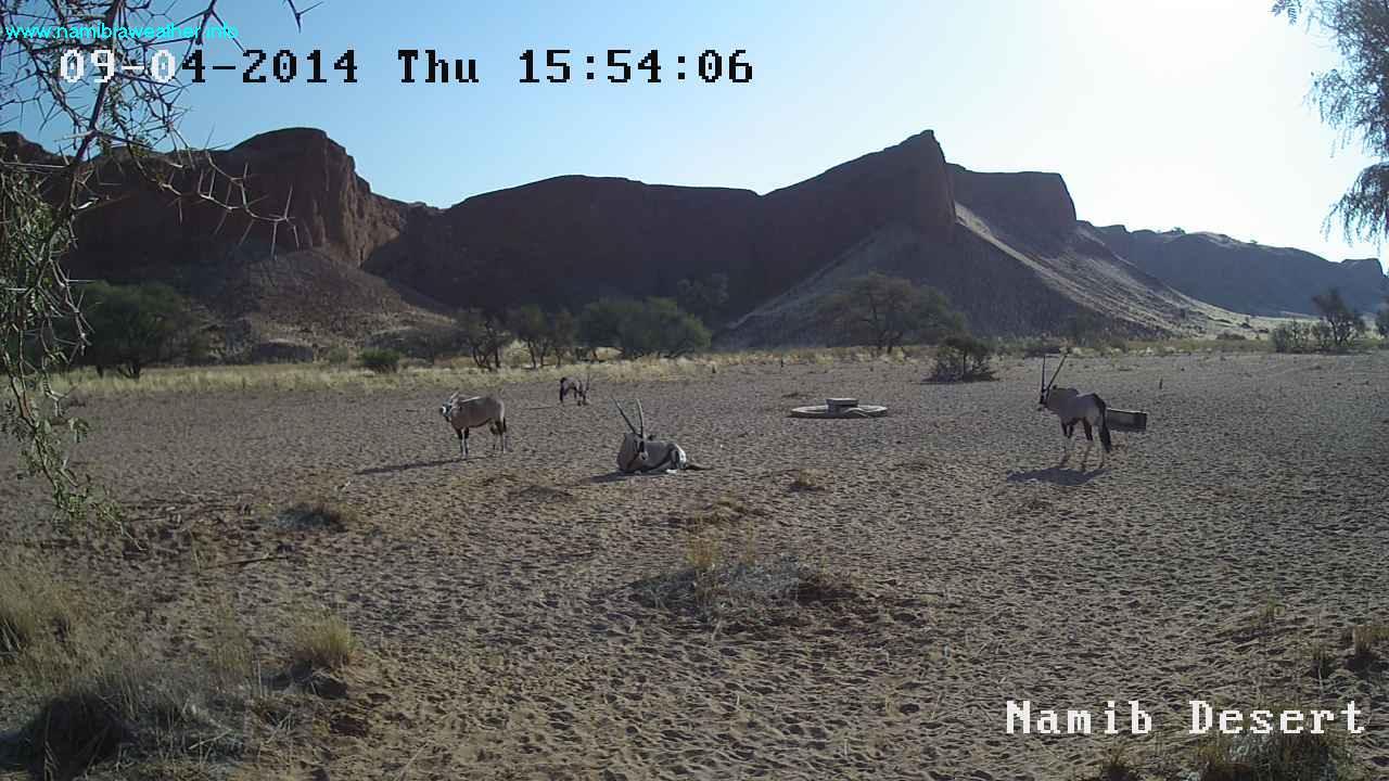 Namib Desert Weather Cam