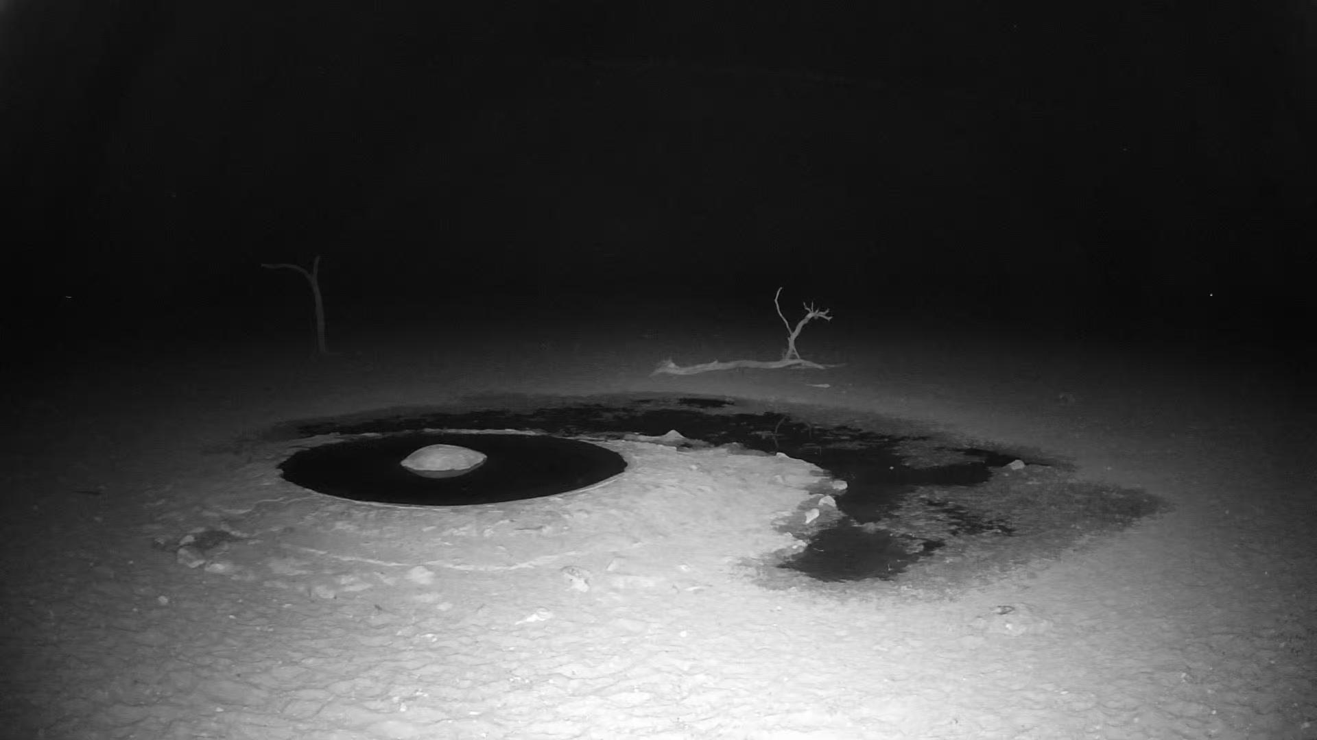 Live Cam Namibia Weather Network, Waterhole, Gondwana Namib Park, Hardap - Namibia